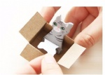 Cute Mini Boxed Cat Post-It Notes